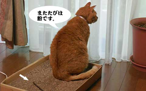 14_09_19_2.jpg