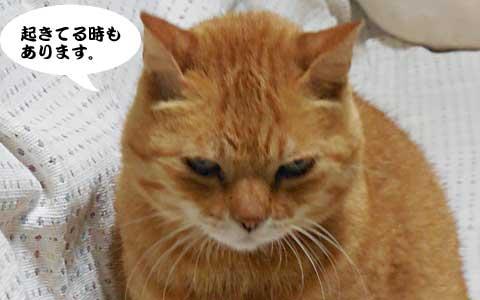 14_09_27_1.jpg