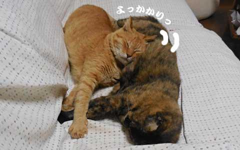 14_10_01_4.jpg