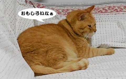 14_10_07_2.jpg