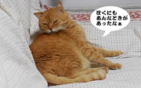 14_10_07_3.jpg