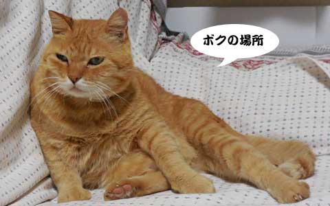 14_10_09_1.jpg