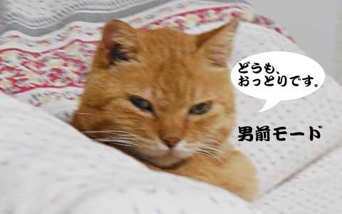 14_10_15_1.jpg