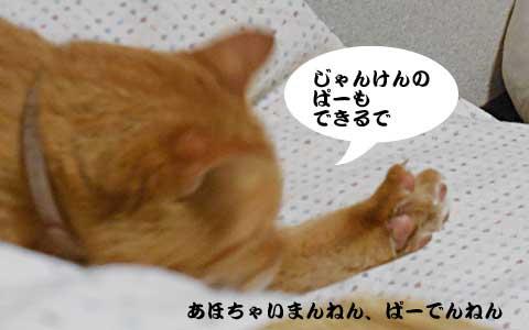 14_10_15_3.jpg