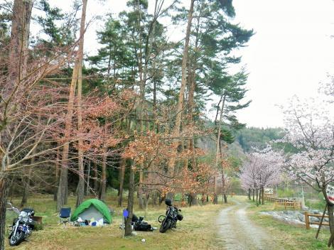 2014 御座松 キャンプ場