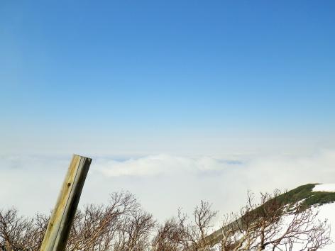 岩木山 雲海
