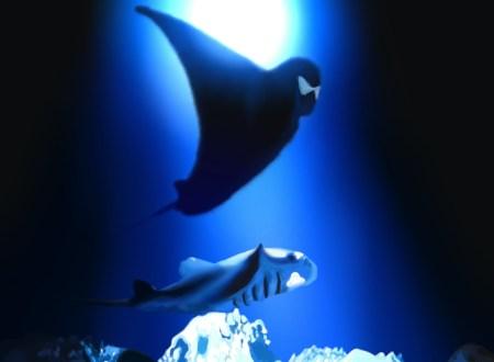 映画「DEEP SEA」「アンダー・ザ・シー」観ました
