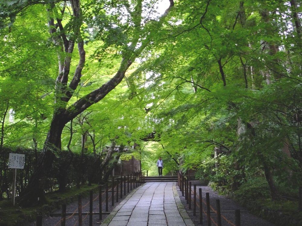 2014082812 Koumyouji