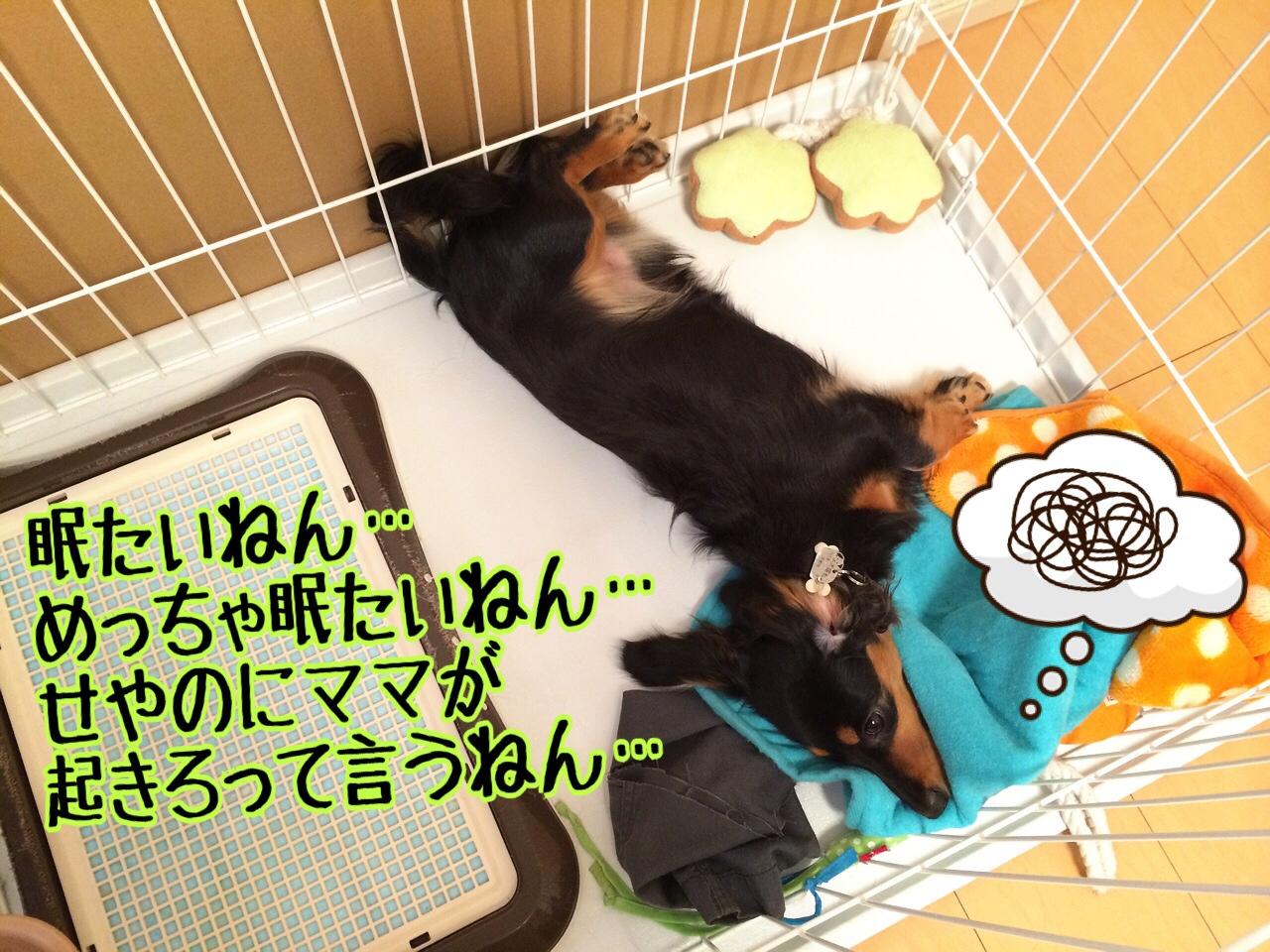 fc2blog_20140730232446599.jpg