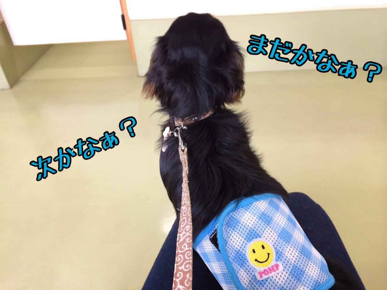 fc2blog_20140829234110d74.jpg