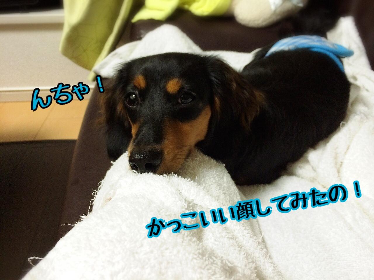 fc2blog_20140830232714d18.jpg