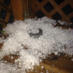 hail-in-melita.jpg