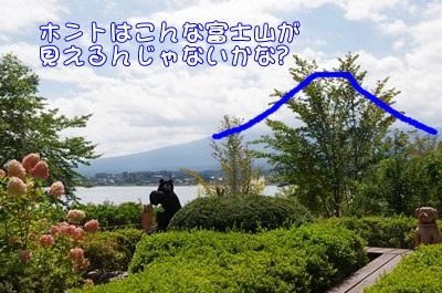 RK52C5941_R.jpg