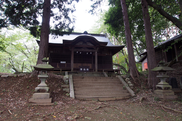 20140815_shimpu_castle-05.jpg