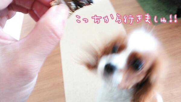 fc2_2014-03-11_23-43-10-297.jpg
