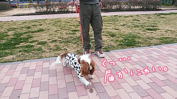 fc2_2014-03-23_22-05-50-315.jpg