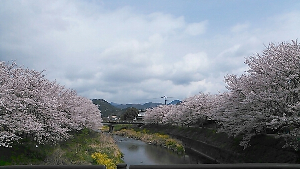 fc2_2014-04-06_16-24-55-776.jpg