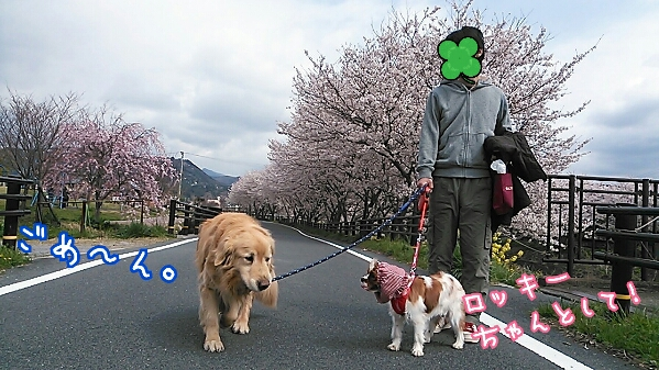 fc2_2014-04-06_16-33-12-260.jpg
