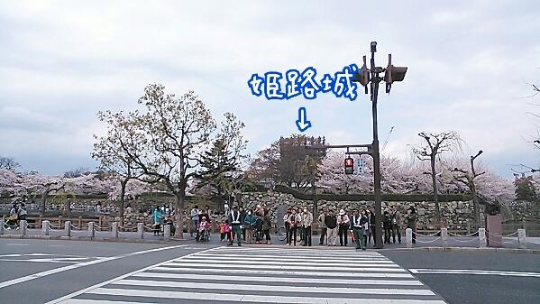 fc2_2014-04-08_08-38-05-467.jpg