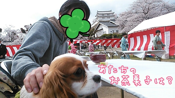 fc2_2014-04-10_06-32-20-574.jpg