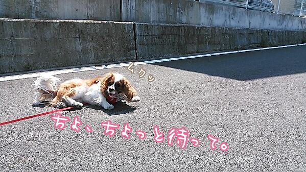 fc2_2014-04-21_20-35-03-791.jpg