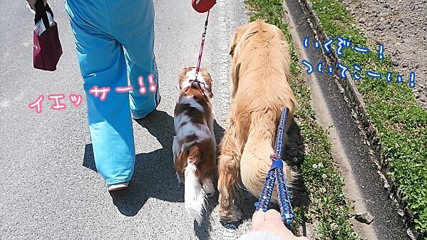 fc2_2014-05-14_22-03-19-961.jpg