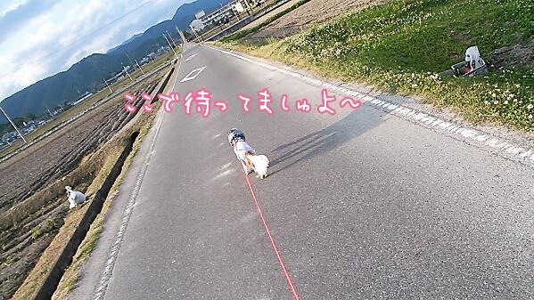 fc2_2014-05-29_05-56-36-946.jpg