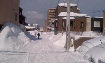 雪が積もった2