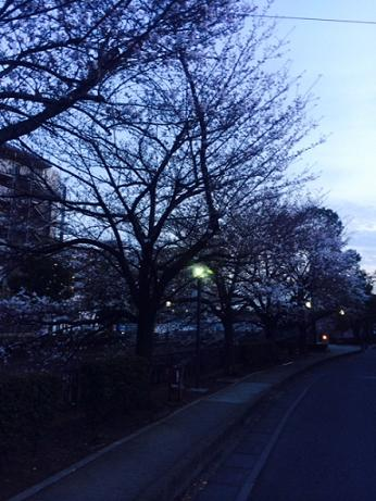 H2013329__ 16