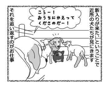 羊の国のラブラドール絵日記シニア!!「頼りになりま・・・す?」2