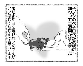 羊の国のラブラドール絵日記シニア!!「ものまね王座?」1