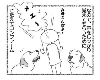 羊の国のラブラドール絵日記シニア!!「延々エンドレス」2