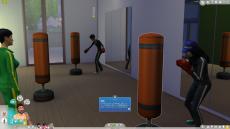 Sims4_ジム_フレームレート_02