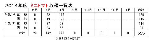 トマト0831