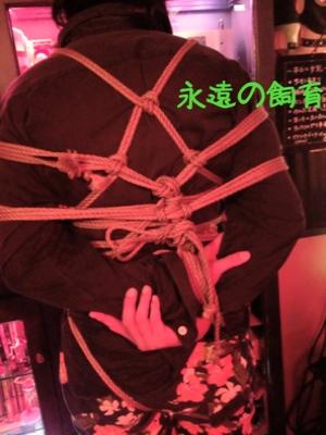 fc2blog_20141006194327ad3.jpg