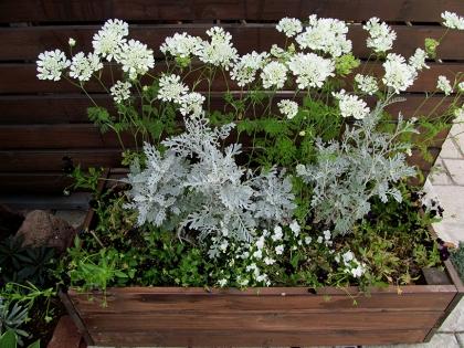 花壇 プランタ