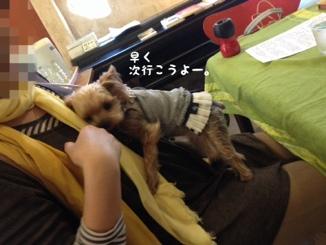 fc2blog_20140318201204f5c.jpg