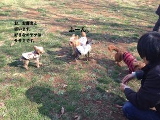 fc2blog_20140322085459af3.jpg