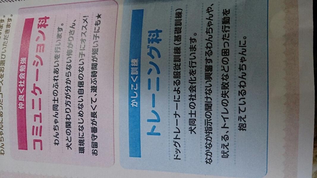 fc2_2014-03-15_17-17-25-296.jpg