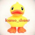 Kamo chan