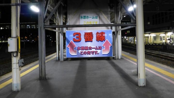 P1140275_.jpg