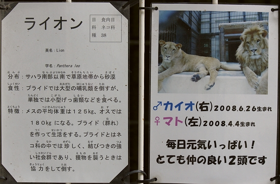 姫路市立動物園_12