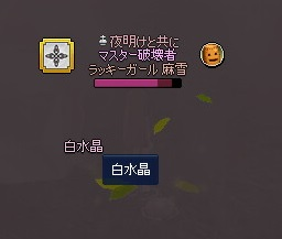 mabinogi_2014_04_05_014.jpg