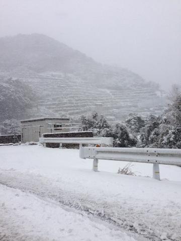 雪の最盛期!!