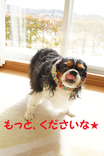 20140219154937fc6.png