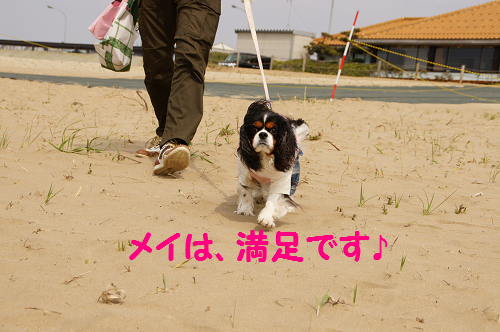 20140515150630c7a.png