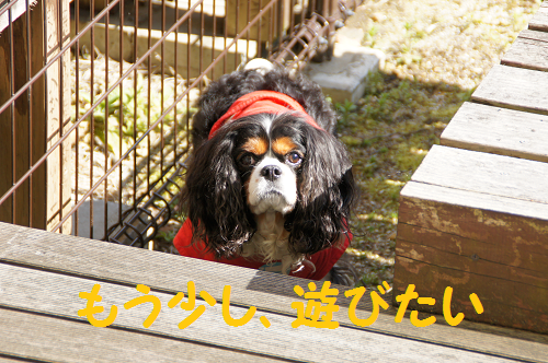 20140521150132f04.png