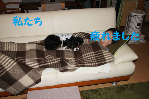 20140530154835406.png