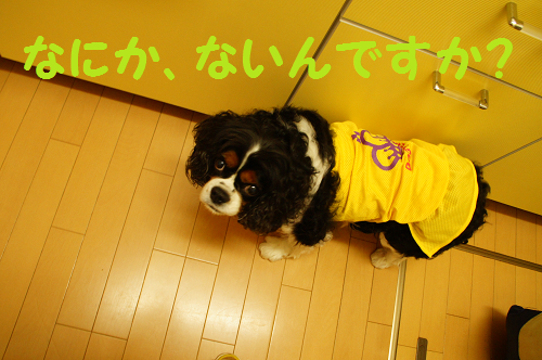 20140701153905211.png