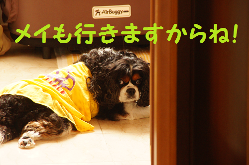 20140701153908601.png